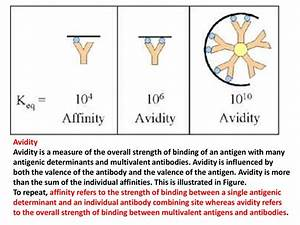 Antigen-antibody Reactions And Selected Tests