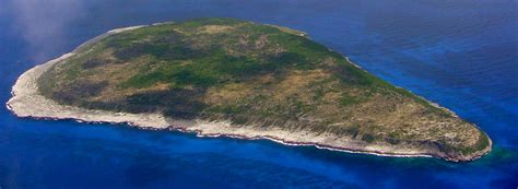 home navassa island  fish  wildlife service