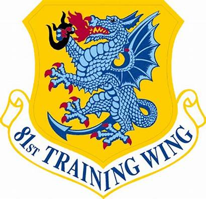 81st Wing Training Air Force Patch Emblem