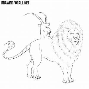 How to Draw a Chimera   Drawingforall.net