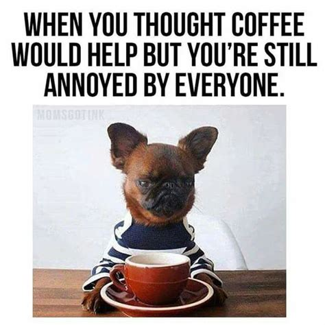 Funny coffee quotes for mondays to wake you up. 100 Coffee Memes So Funny They'll Make You Spit Out Your ...