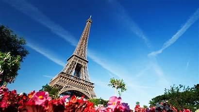 Eiffel Tower Paris France Flowers Architecture Desktop
