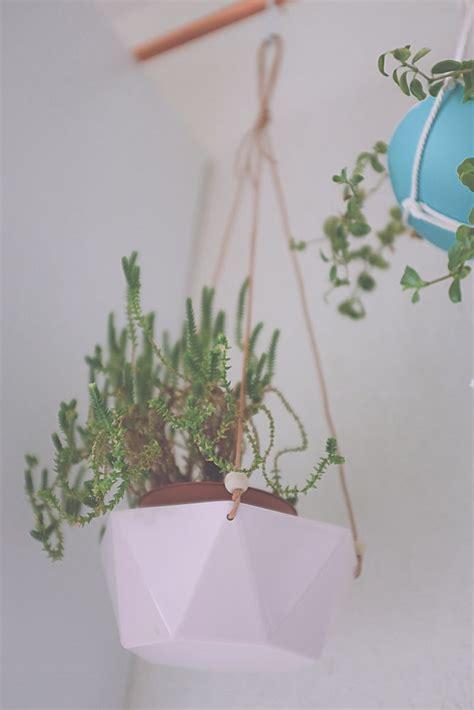 planter un pin parasol diy transformer un bol en suspension pour plante places planters and a bowl