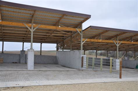 Cattle Barns Designs by Open Front Cattle Shed Plans Studio Design Best