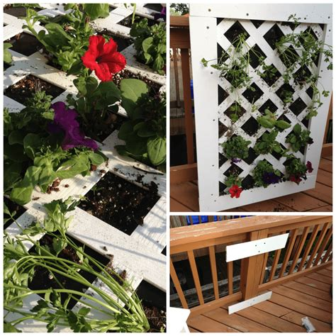 Vertical Garden Project by Vertical Garden Project Thoughts Digin A Musing