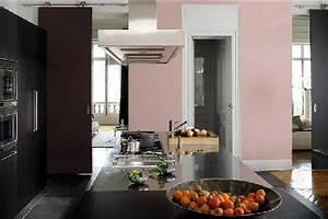 Cuisine Rose Poudré : 15 nouvelles couleurs pour la peinture cuisine d co cool ~ Melissatoandfro.com Idées de Décoration