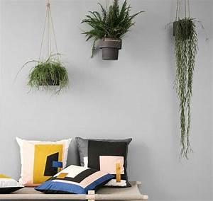 Pflanzen Im Schlafzimmer : schwebende g rten pflanzen aufh ngen bild 13 sch ner wohnen ~ Indierocktalk.com Haus und Dekorationen