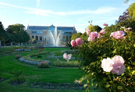 Botanischer Garten Köln Eintritt by K 246 Ln Botanischer Garten Taiko Club