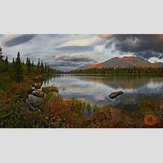 "The Festival Of Nature ""undisturbed Russia"" · Russia Travel Blog"