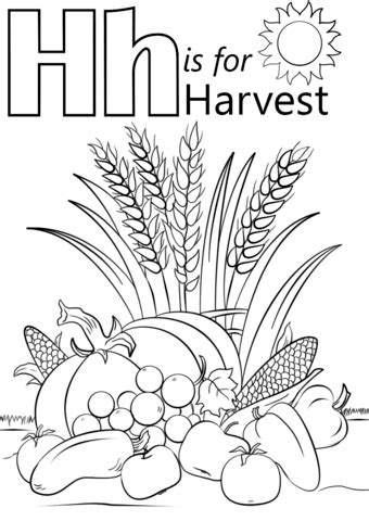 letter    harvest coloring page  printable coloring pages