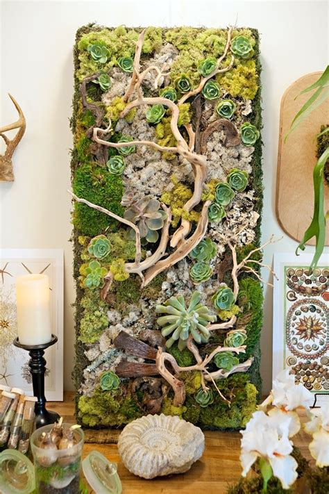 Vertical Garden Succulent Wall Panels by Best 25 Succulent Frame Ideas On