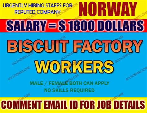 biscuit factory workers required for apply now