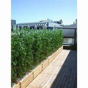Bambou En Pot Pour Terrasse : decoration florale artificielle terrasse verdure ~ Louise-bijoux.com Idées de Décoration