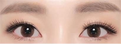Brown Monet Neo Lenses Contacts Circle Astigmatism