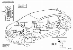 Wiring Diagram For A 2009 Toyota Venza