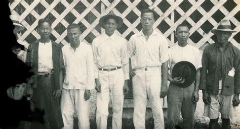 history   chinese  samoa coconet