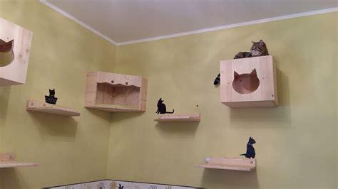 Wandbretter Für Katzen by Diy Katzen Kletterwand Katzenblog De Interessantes