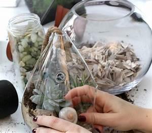 Sukkulenten Im Glas : sukkulenten im glas basteln pflegeleichte zimmerpflanzen ~ Watch28wear.com Haus und Dekorationen