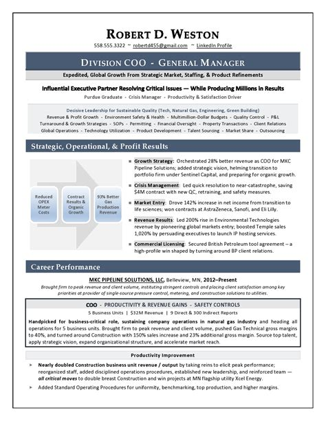 Executive Resume Writing Services by Sle Coo Resume Executive Resume Writer Executive