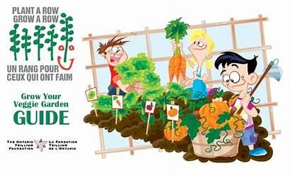 Grow Garden Row Gardening Vegetable Plant Veggie