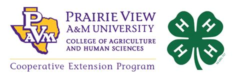 downloads college  agriculture  human sciences