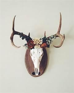 Best ideas about deer mounts on euro