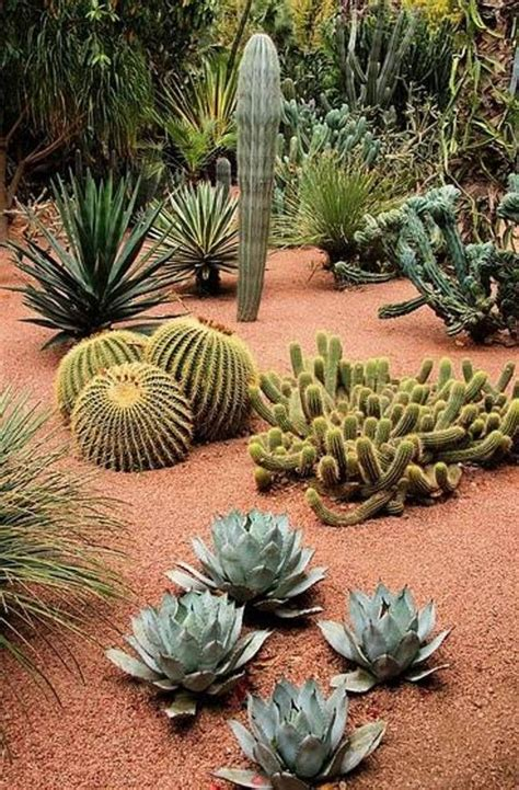 great southwest landscape design southwest landscaping pinterest gardens spring  front