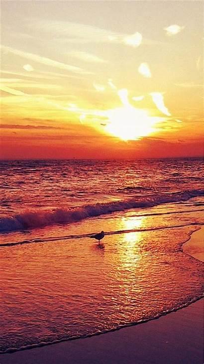 Iphone Wallpapers Beach Backgrounds Desktop Nice Sunset