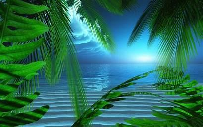 Screensavers Wallpapers Screensaver Summer Seaside Night Animated
