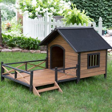 unique dog house plans  porch  home plans design