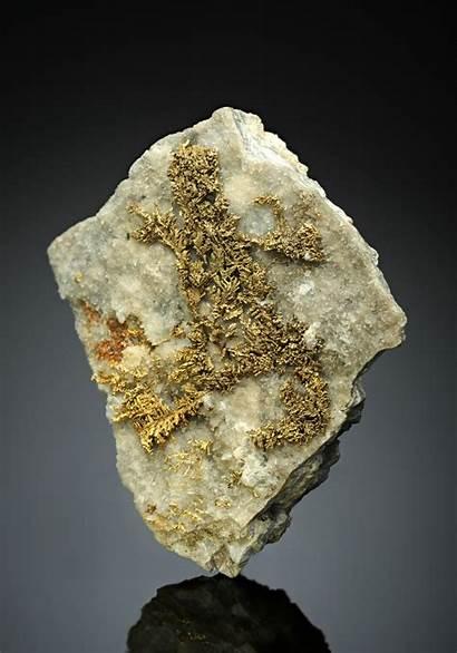 Gold Native Romania