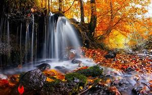 nature, Landscape, Waterfall, Trees, Leaves, Fall, Moss ...
