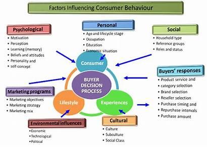 Consumer Behaviour Marketing Factors Strategies Influencing Analysis