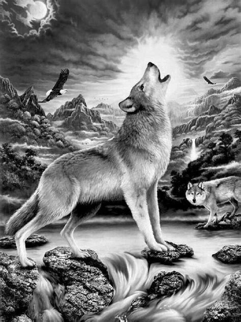 pin  hal hensley  grayscale coloring pages wolf images wolf pictures wolf artwork
