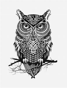 Scary Owl Illustration in Black & White   SOLETOPIA