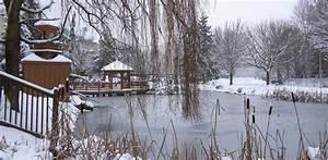 Teich Winterfest Machen : gartenteich winterfest machen tipps im teichpoint blog teichpoint ~ Buech-reservation.com Haus und Dekorationen