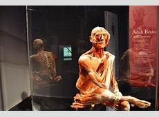 Body Worlds 2 Opening Tomorrow at the Franklin Institute