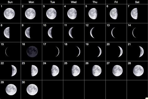 january calendar  moon calendar moon phase calendar