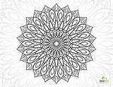 Coloring Flower Complex Pages Mandala Sheets Printable Adults Geometric Complicated Colouring Adult Dragon Getcolorings Books Getdrawings Template sketch template
