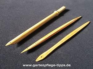 Bambus Vernichten Tipps : schreibfeder aus bambus selber machen ~ Whattoseeinmadrid.com Haus und Dekorationen