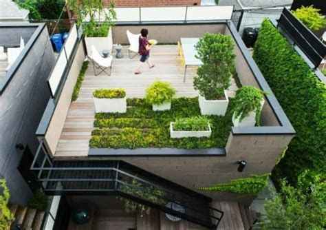 how to rooftop garden roof gardens all you need to know cape contours