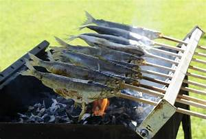 Fisch Grillen Weber : fisch grillen tipps f r den maritimen genuss tipps ratgeber ~ Buech-reservation.com Haus und Dekorationen