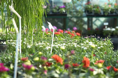 wur bloemen leo marcelis hoogleraar tuinbouw aan wageningen