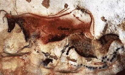 Cave Lascaux Paintings Many