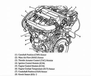 Location Of Engine Coolant Temperature Sensor  Where Is