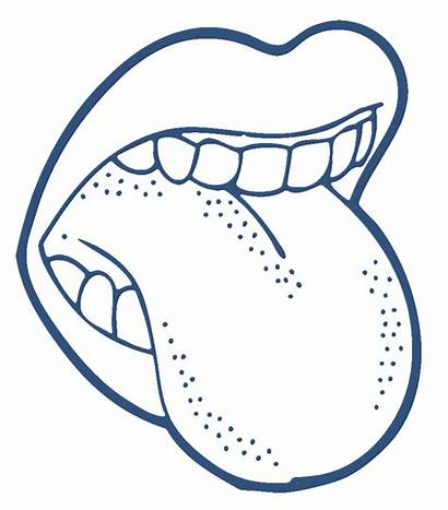 Mouth Clipart Open Clipartion