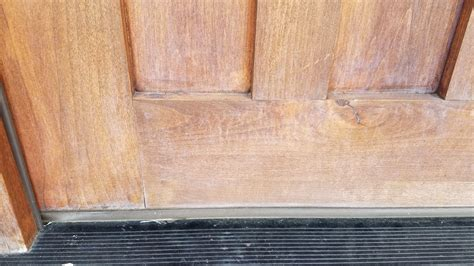 repair sun damage   exterior door popular