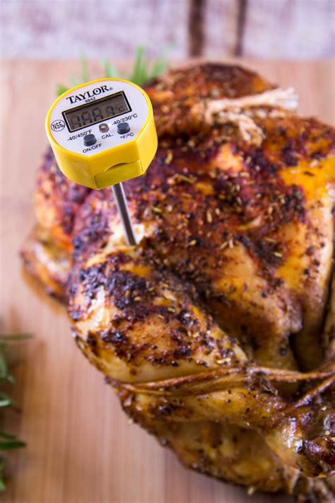 chicken temperature how to take the temperature of a turkey or chicken everyday good thinking