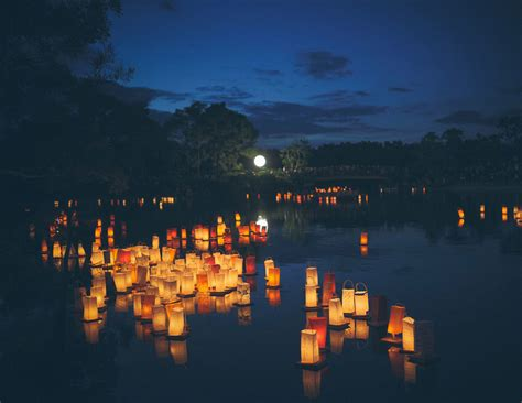 festival of lights florida you don t want to miss this gorgeous lantern festival in