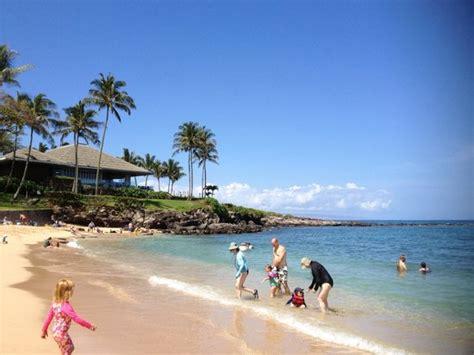 foto de kapalua beach kapalua kapalua beach maui hawaii tripadvisor